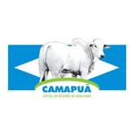 Camapuã