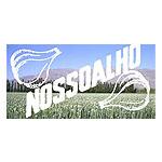 NOSSOALHO