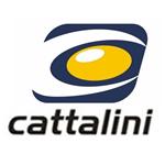 Catallini